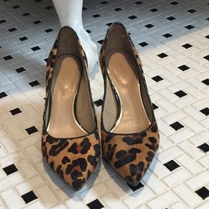 Antonio Melani calf hair leopard pumps